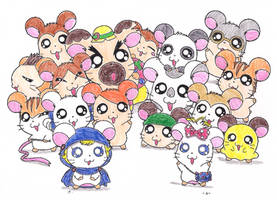 Hamtaro by macaustar