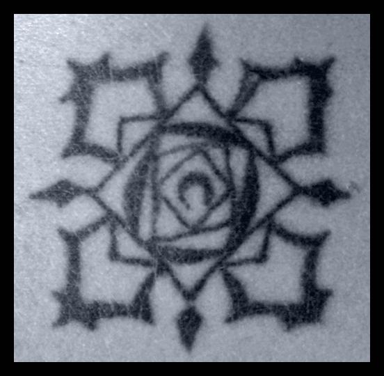 Tattoo: Bloody Rose