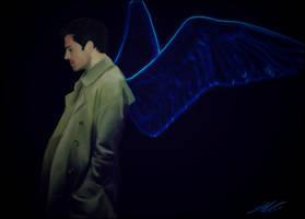 Wings. by CARstiel