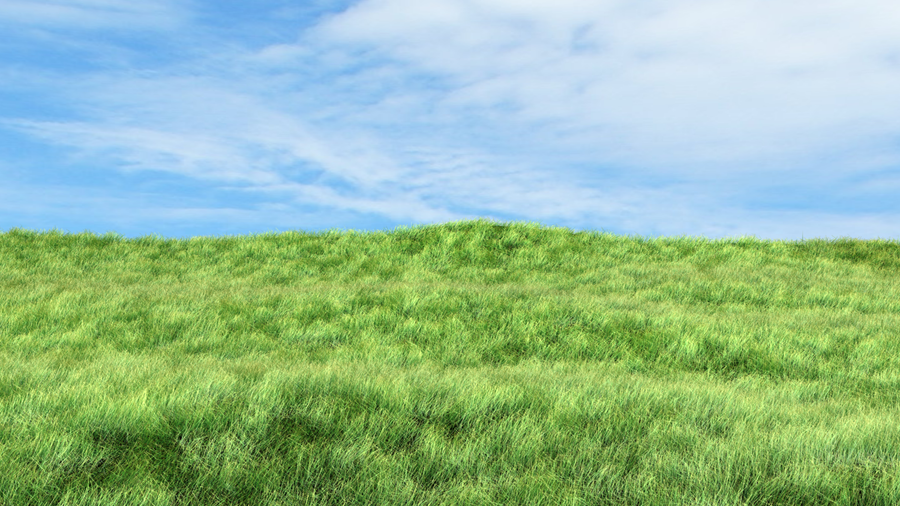 Grass Landscape Grass landscape by leetzero on deviantart grass landscape by leetzero workwithnaturefo