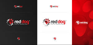 Red Dog Digital