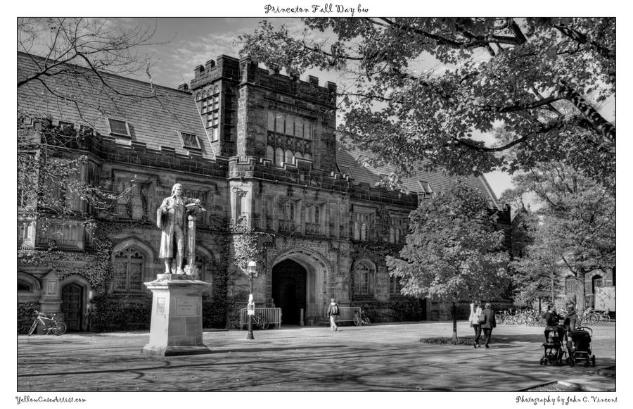 Princeton Fall Day bw by yellowcaseartist