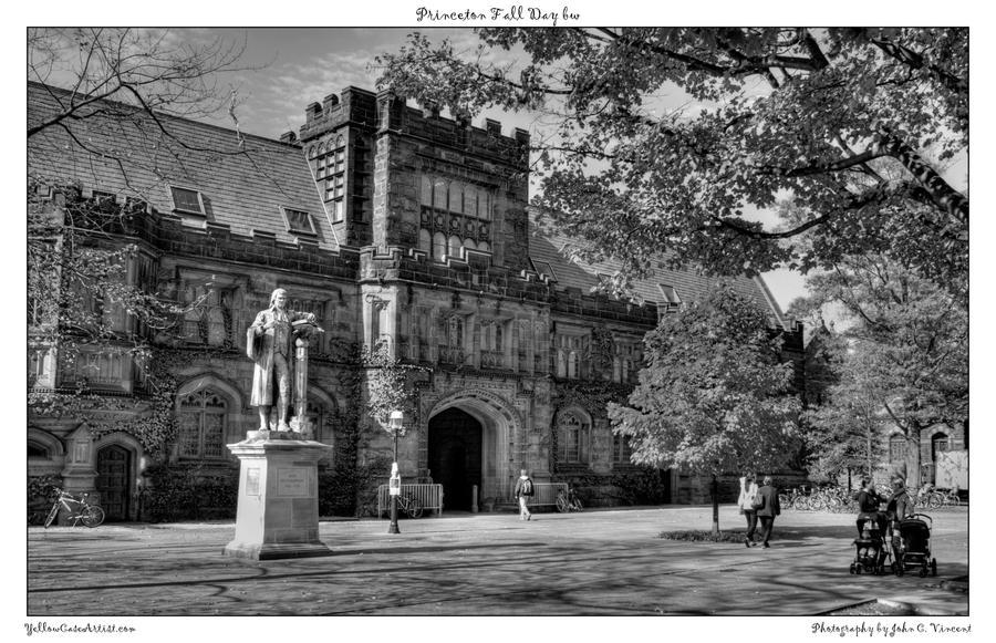 Princeton Fall Day bw by yellowcaseartist