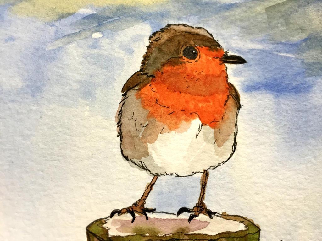 2016 English Robin by GentlestGiant