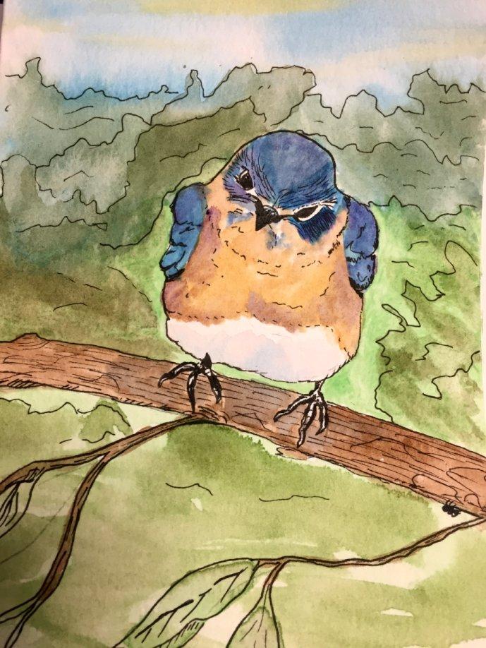 Scarlette Bluebird by GentlestGiant