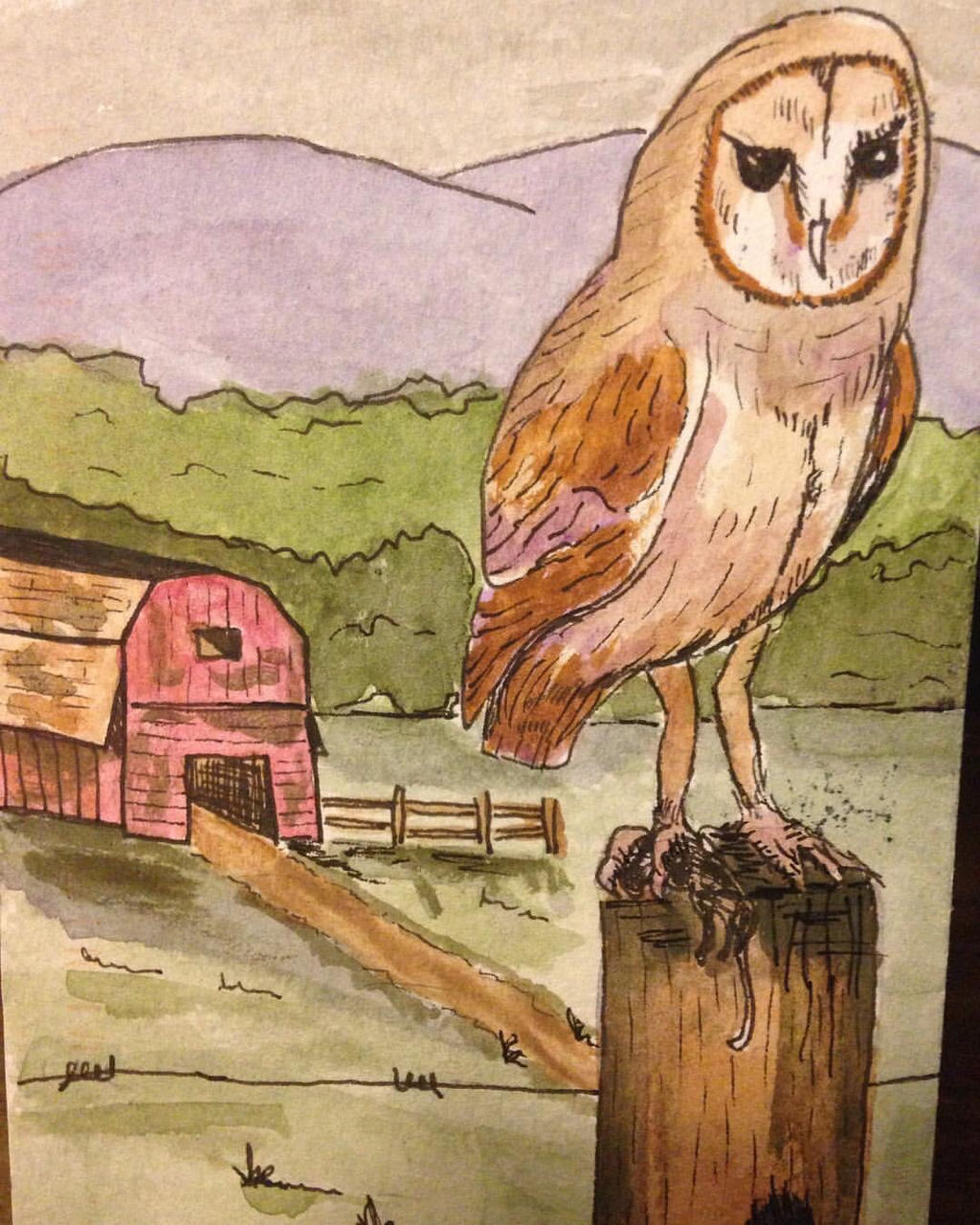 Barn owl by GentlestGiant