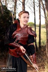 Glynn armor -4