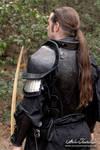 Arcael armor -2