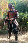 Hjalmar armor - 1