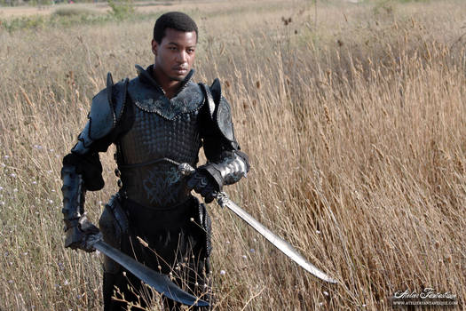 Armor of Blades -5