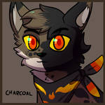 [CON] Charcoal by malpractition