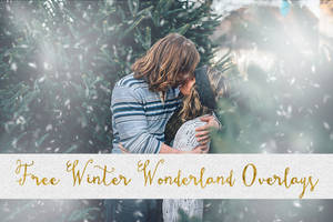 Free Winter Wonderland Snow Overlays Packs 1-5 by toxiclolley88