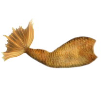 Gold Mertail by JinxMim