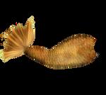 Gold Mertail