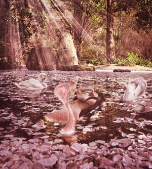 Sakura Mermaid