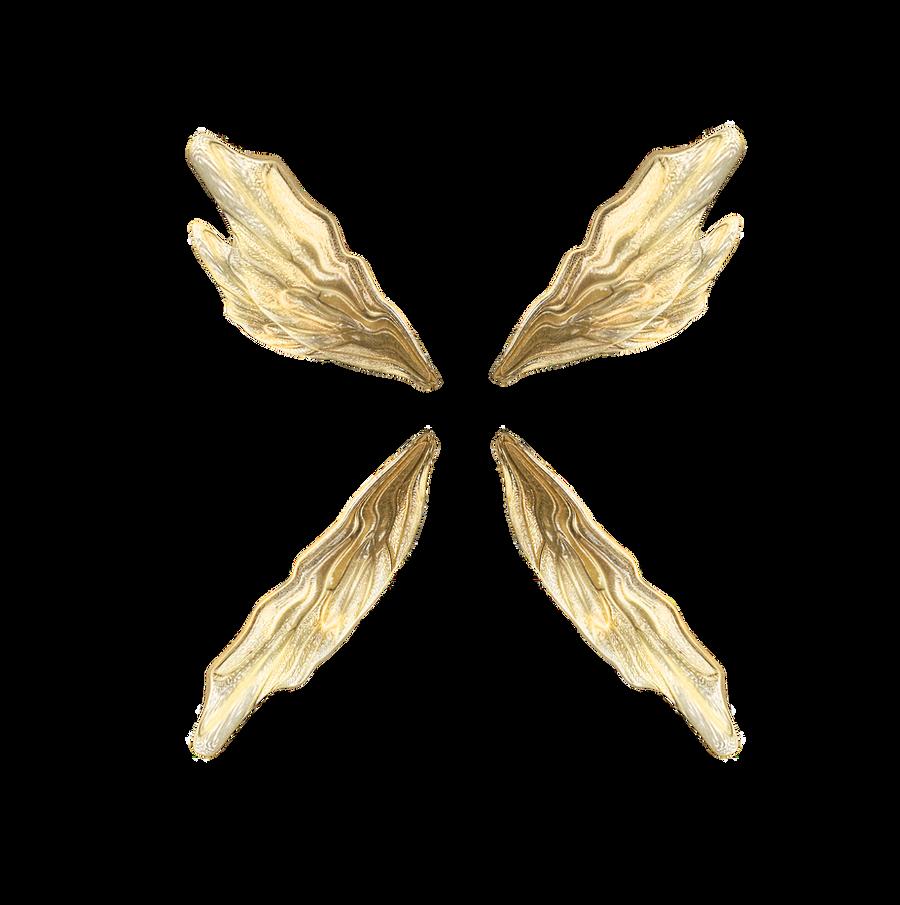 Froud Wings png by JinxMim