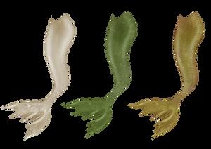 Wavy Mermaid Tails