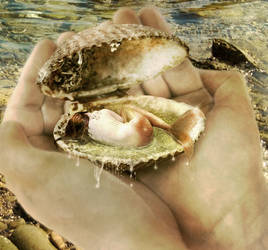 Mermaid in a Shell by JinxMim