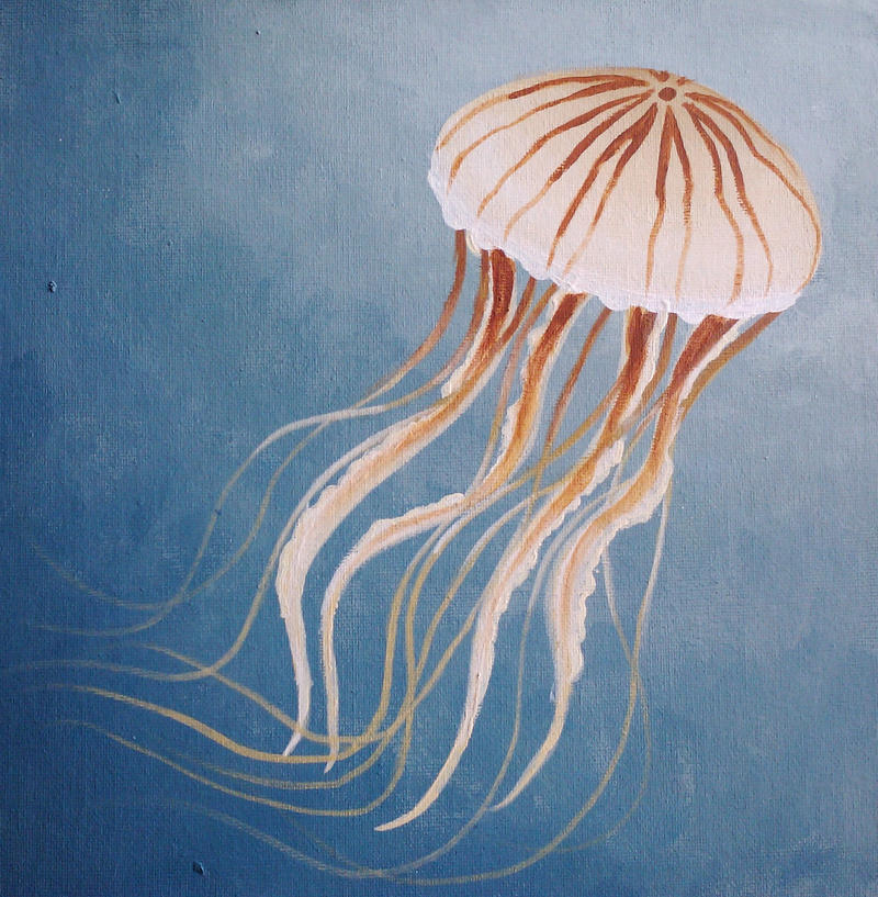 Swimming Jellyfish by starbuxx