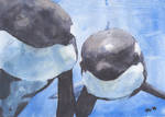 Watercolor Killer Whales
