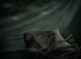 Veil by LanaTustich