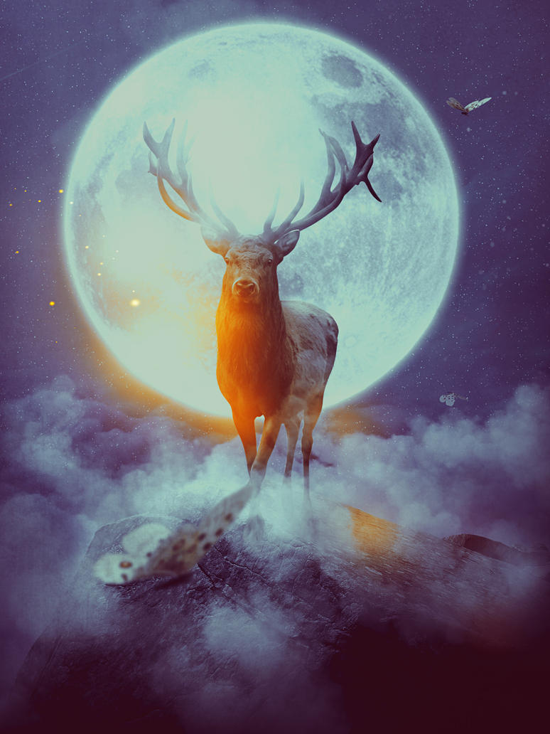 Image result for Full Moon deer