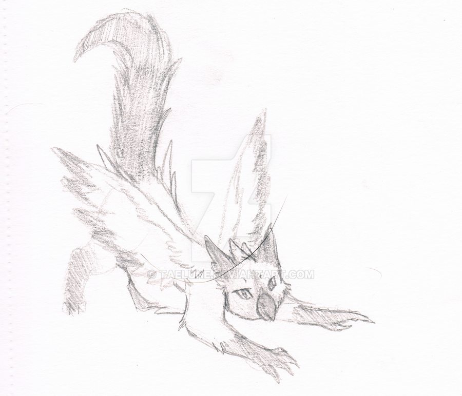 Griffin Cat Sketch by Taelune
