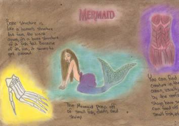 Mermaid by brookekight16