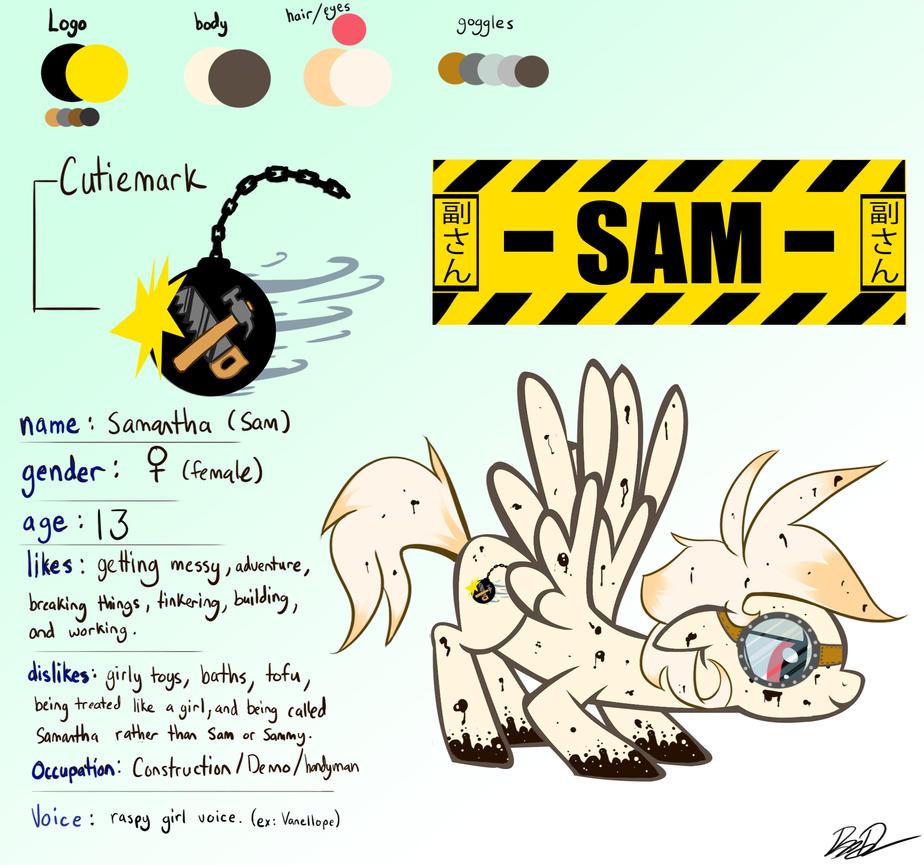 Mlp Oc Sam Character Ref Sheet By Vicse On Deviantart
