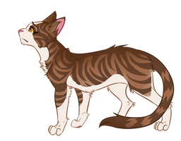 Warrior Cats characters - Leafpool by Kocurzyca