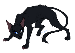 Warrior Cats characters - Crowfeather