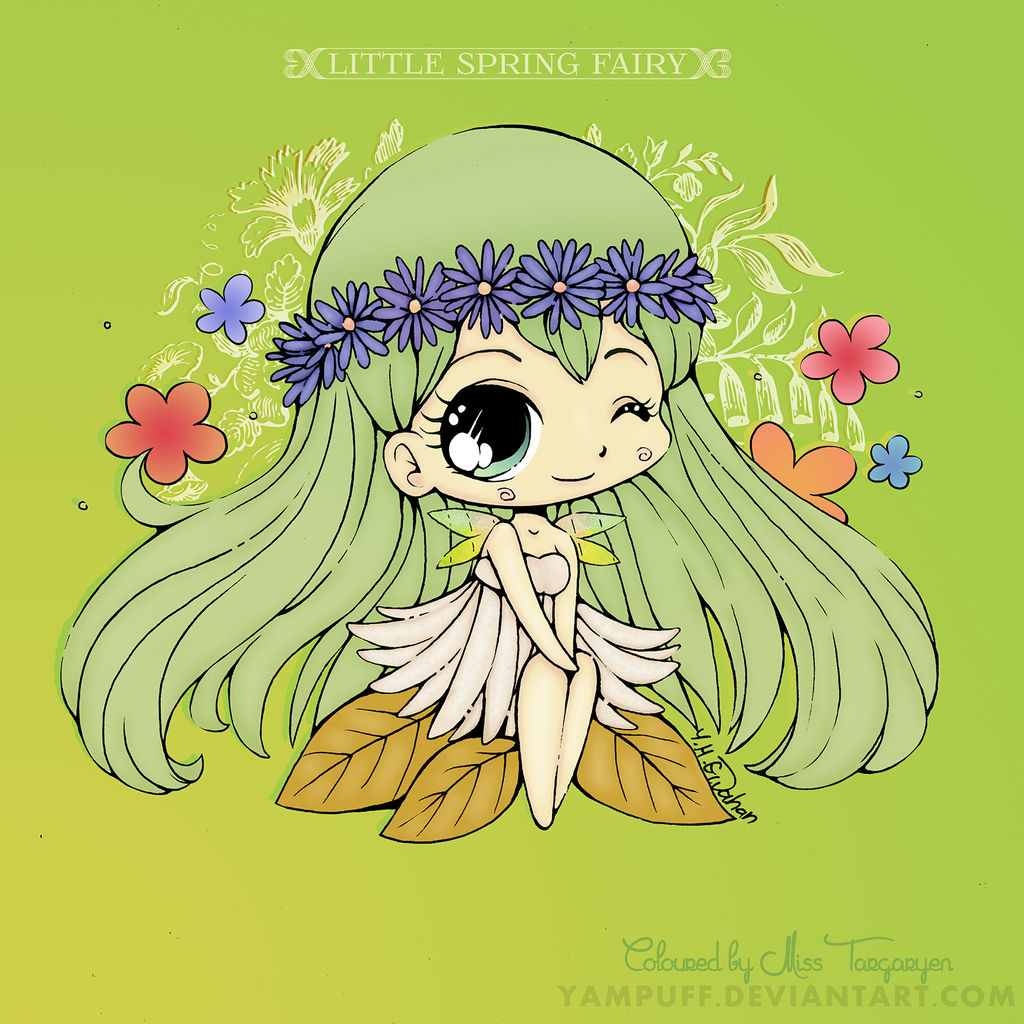 Coloured Daisy. Lady of Spring.