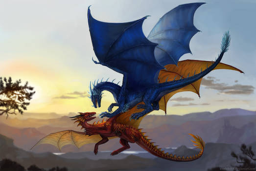 Dragons Commission
