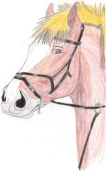 Riding pony by hamano-kumiko