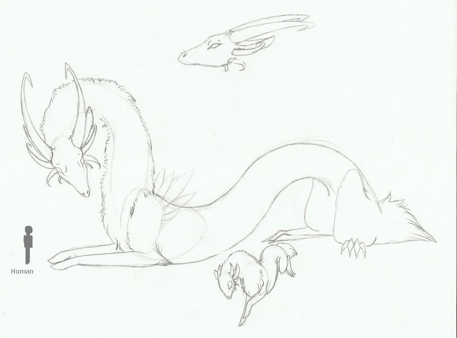 .:Dragon Concept:.-SOLD by LeeOko