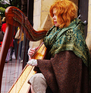 The Harp Player - Part II