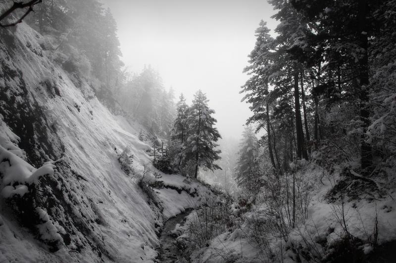 Svart Skog by CleaLlyfr