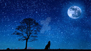 Dog Wolf Yelp Moon Tree Night Starry Sky
