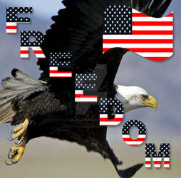 American Flag/USA Flag/Eagle Flag