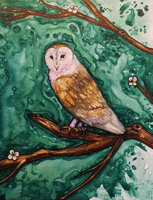 OwlCG by jenc