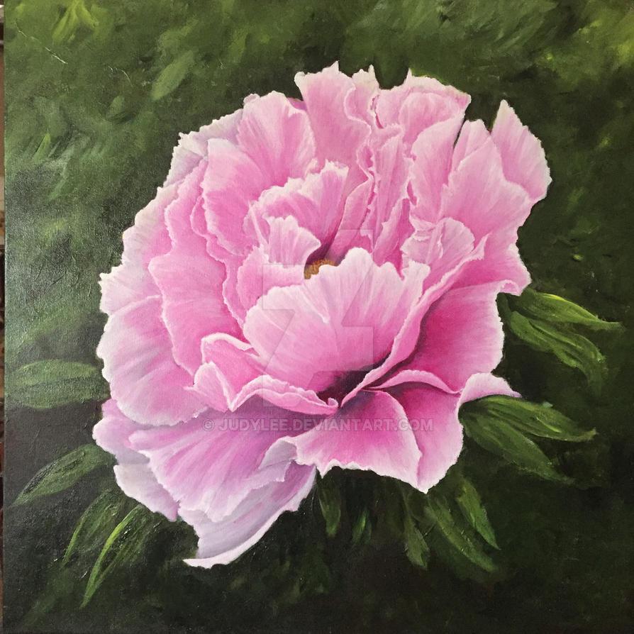 Bloom by judylee