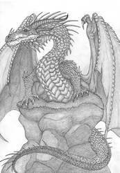 Dragon by Aesirr