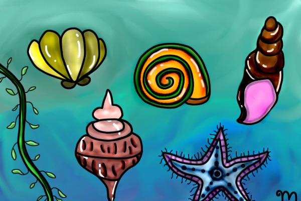 Seashell Shine by mickeyge98