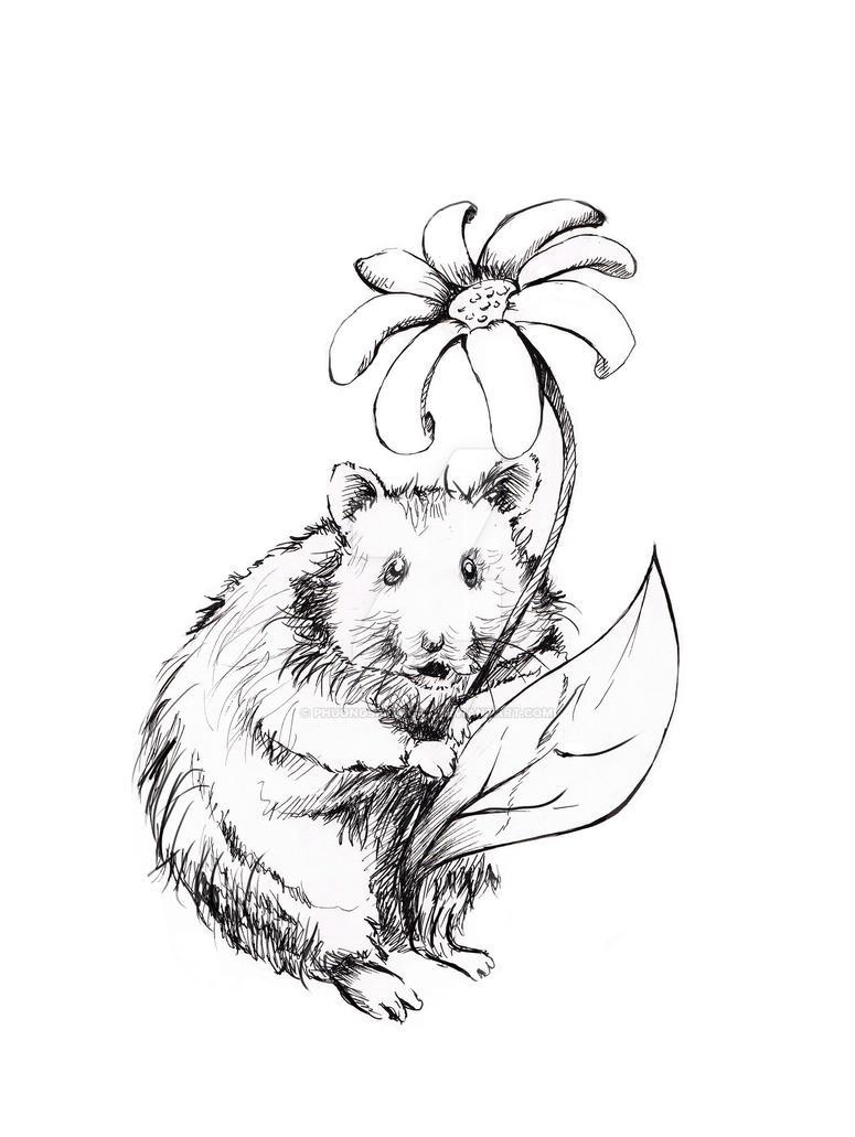 Hamster and flower by phuongsupercat