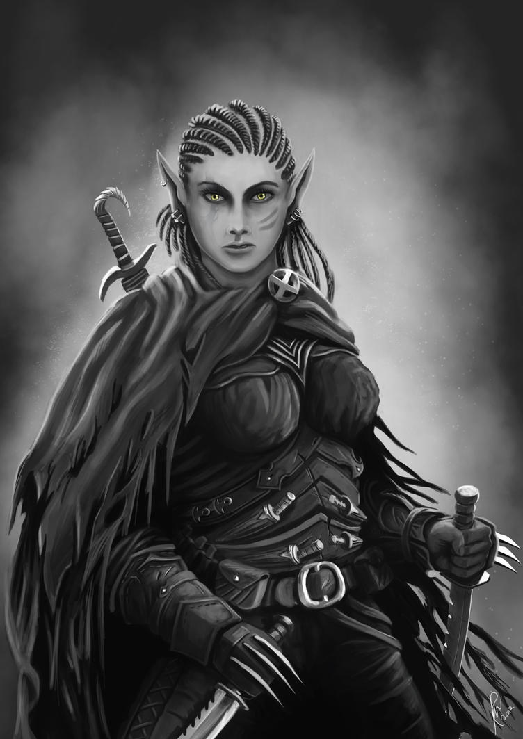 Elf Assassin  (Commmission) by RaymondMinnaar