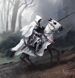 Knight speedpainting by RaymondMinnaar