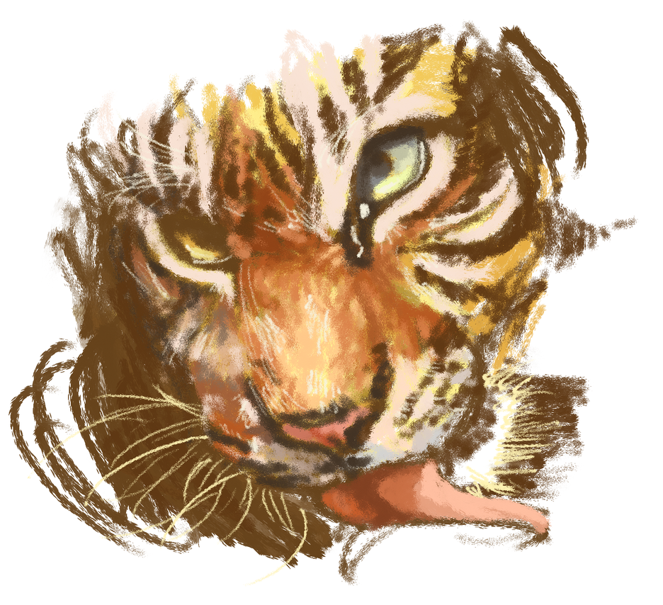 Tiger Sketch by Goggles0-0