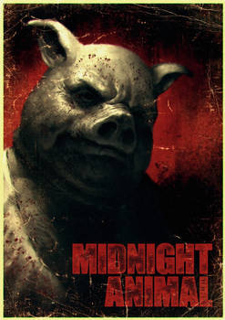 Midnight Animal
