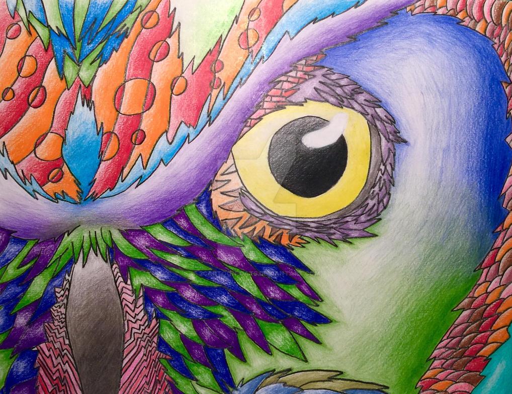 An Owls Eye by 2Cartoon-Cats