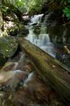 Soco Falls by Carise